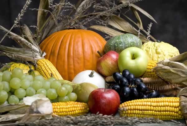 UPDATE: Harvest Festival rescheduled to November 3, 1-4p.m.